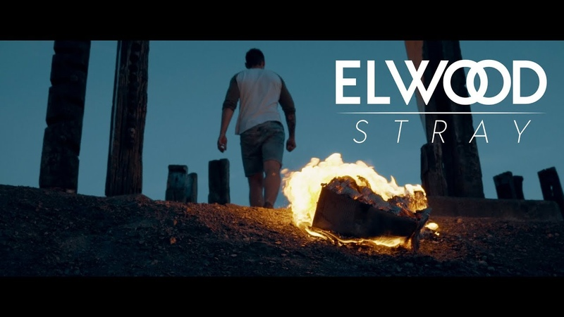 ELWOOD STRAY - You Lost feat. Kassim of ALAZKA (Official Video)