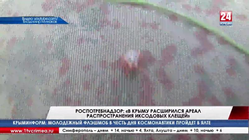 Роспотребнадзор «В Крыму расширился ареал распространения иксодовых клещей» Внимание, начался сезон активности клещей! С середи