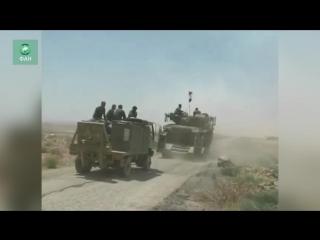 Сирия на границе с Иорданией: ФАН публикует видео передвижения колонны САА в Даръа
