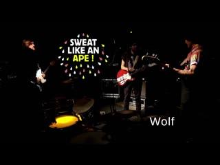 Sweat like an ape! - wolf (live session)
