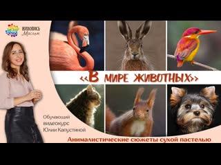 Открытый вебинар  и запуск нового курса по сухой пастели. Юлия Капустина