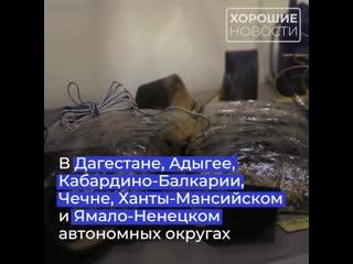 В 2019 году сотрудники ФСБ и МВД России пресекли деятельность террористических ячеек в 17 регионах страны.