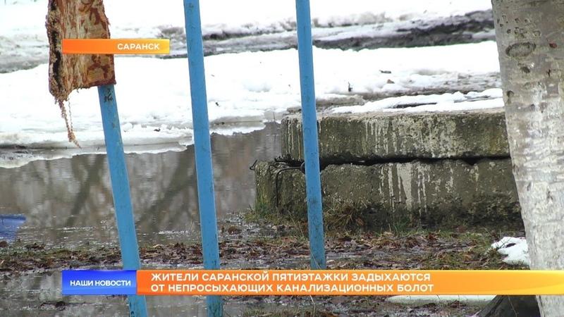 Жители саранской пятиэтажки задыхаются от непросыхающих канализационных болот