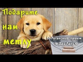 Поможем все вместе Луганскому приюту Дай Лапу