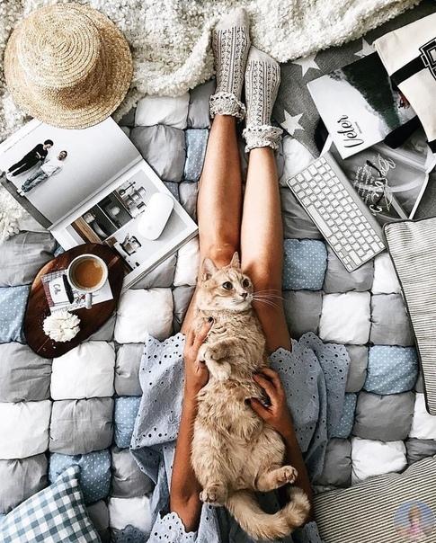 Уютные фотографии с котом Луи от zhuova_dasha_