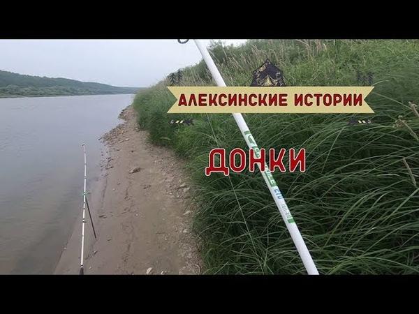 Алексинские истории Ловля на донки 2019