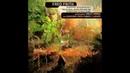 Fred Frith – Quartets [Full Album]