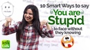 How to say 'You Are Stupid' to someone's face Learn 10 Smart Phrases Funny English Lesson Plan