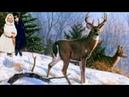 ✨КРАСИВАЯ ЗИМНЯЯ сказка✨ЛИЗОНЬКА и ГАРРИ с ОЛЕНЯМИ в волшебном лесу✨Чем дальше в лес, тем интересней