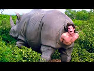 Эйс Вентура 2: Когда зовет природа (1995)