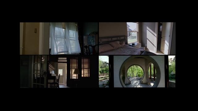 La imagen rizomática, el cine de Terrence Malick - Videoensayo