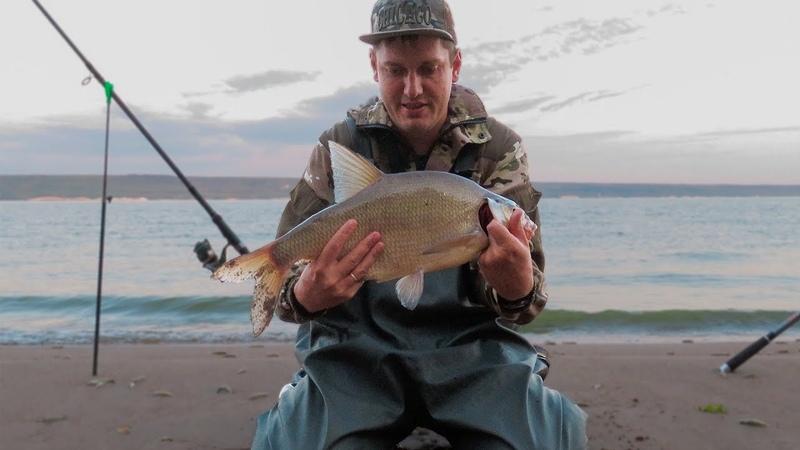 ВОТ ЭТО ЛОПАТА Ловля трофейного леща на пшено и сало Рыбалка 2019 на донки