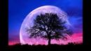 432Hz Healing Sleep Music ➤ Fall Asleep Fast and Easy   Healing Sleep Patterns   Relax Feel Safe