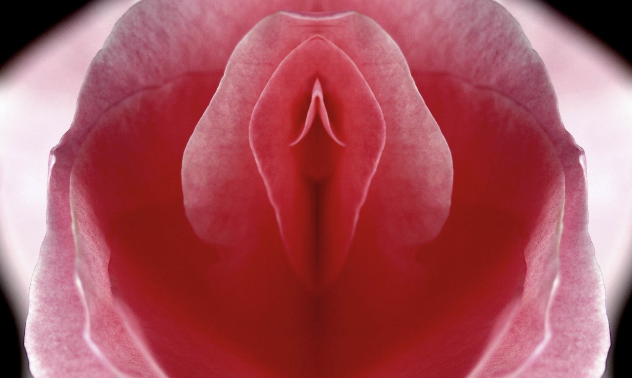 Buy The Women's Gold Labia Spreading Clitoral Exciter
