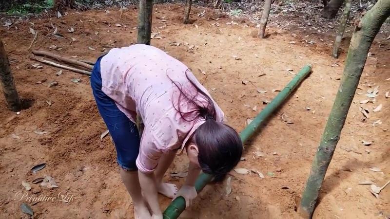 Em gái từ bỏ thành thị ô nhiễm vào rừng cất nhà tập 1