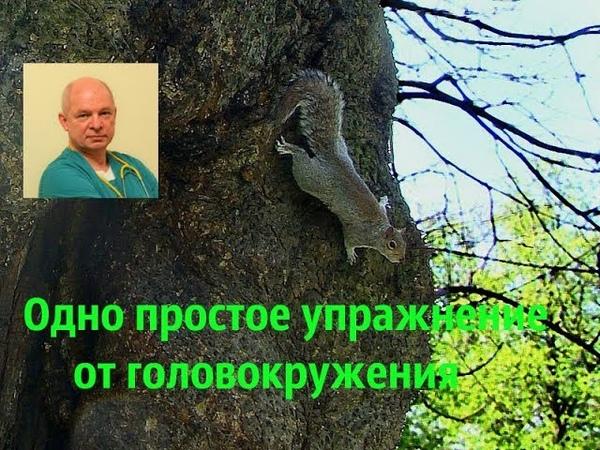 Мамонтов Массаж от головокружения