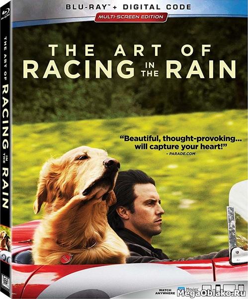 Невероятный мир глазами Энцо / The Art of Racing in the Rain (2019/BDRip/HDRip)
