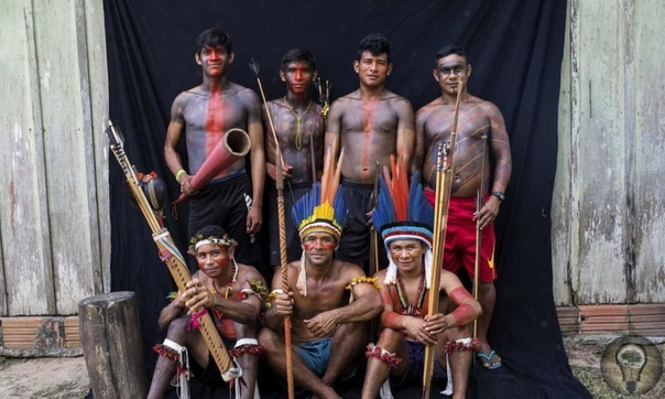 Вождь со смартфоном: быт бразильского племени тэмбе  между традициями и современностью