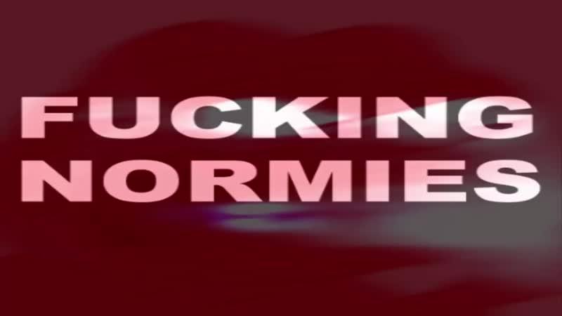 FUCKING (hecking) NORMIES