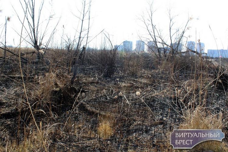 По «горящим» следам весенних палов прошли сотрудники МЧС