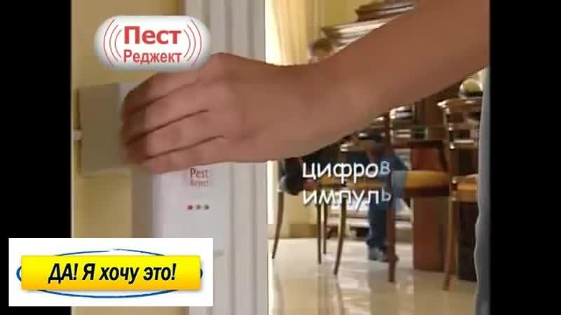 Pest reject от мышей