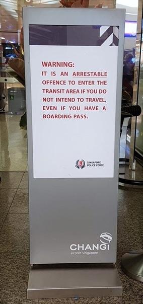 Полиция арестовала жителя Сингапура, который купил себе билет на самолет, чтобы, попав в транзитную зону, проводить жену