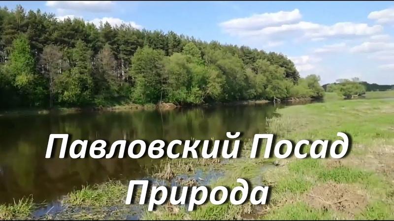 Павловский Посад Природа