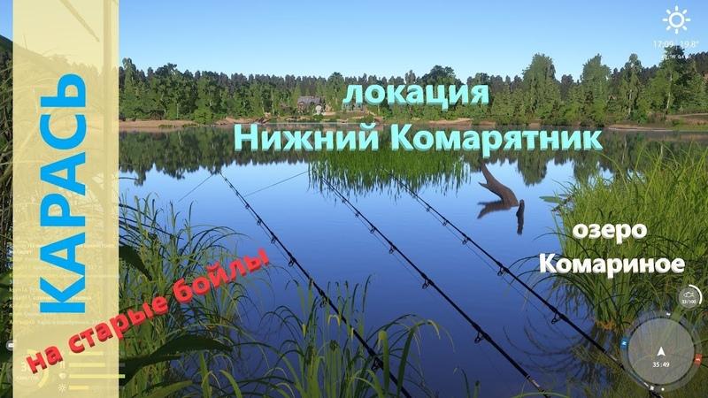 Русская рыбалка 4 озеро Комариное Караси на старые бойлы