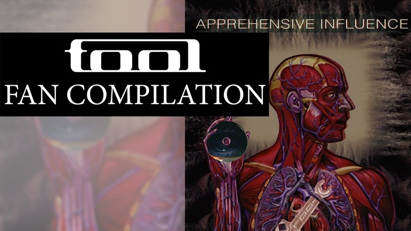 Tool - Apprehensive Influence | Fan Compilation
