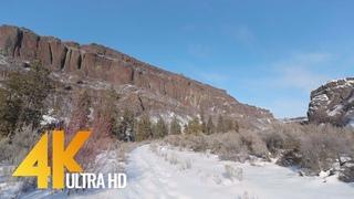 4K Virtual Hike with Snow Crunching Sound - Winter Walk along Northrup Canyon