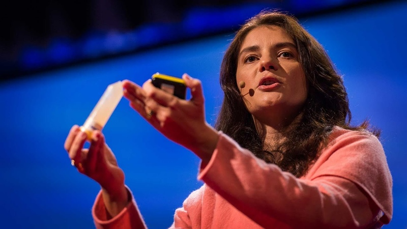 What is so special about the human brain Suzana Herculano Houzel