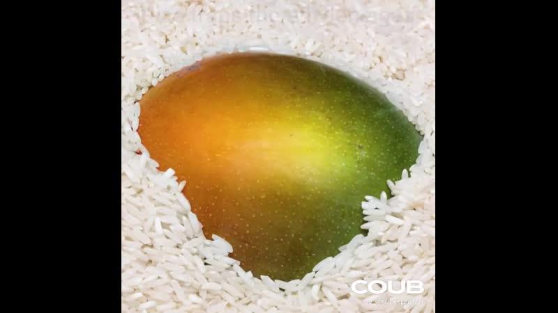 Ripe Mango!
