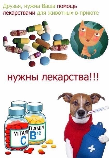 Картинки нужна помощь лекарствами