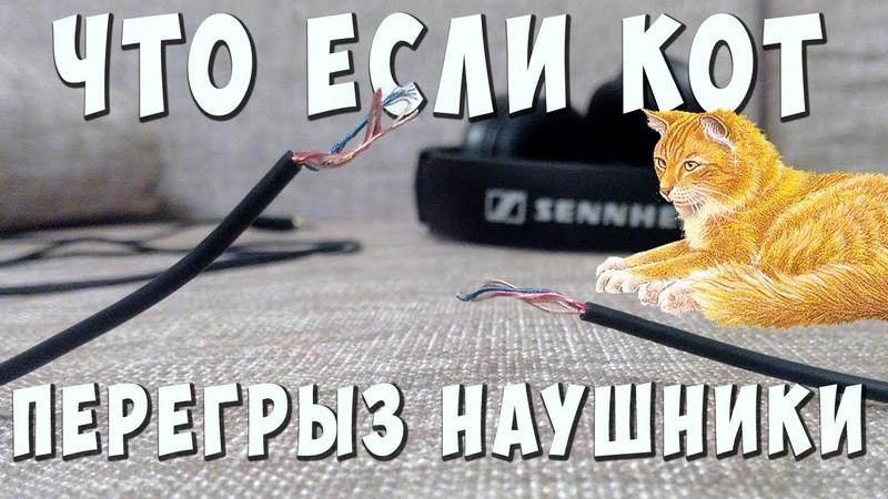 ✅👍 Что делать если кот перегрыз провод Как спаять провод наушников ✅
