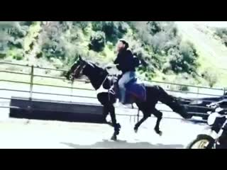 Keanu reeves learns how to perform stunts while riding a horse for john wick 3