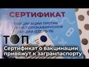 Сертификат о вакцинации привяжут к загранпаспорту НОВОСТИ ТОПС