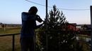 Свободная импровизация на скрипке - violin free improv - kosta t