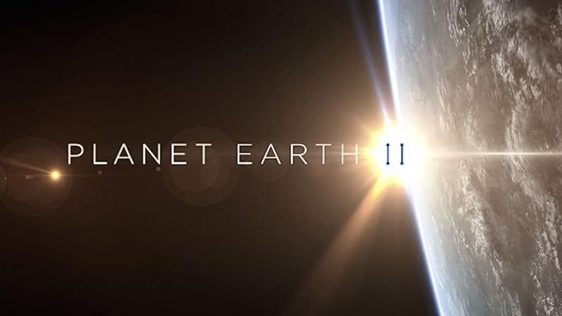 BBC. Планета Земля 2 2016 г. - Научно-познавательный - Пустыни