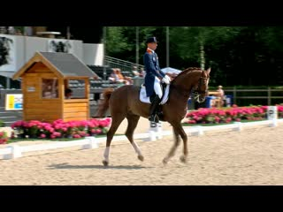 Kingsley Donadeo Grand Prix Special Kleine Finale - NK Dressuur, Ermelo - 2015