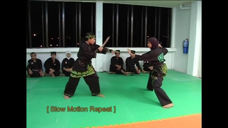Silat Gayung Fatani Malaysia (The Heritage of Malay Silat)
