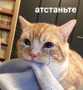 Фотоальбом Тани Тавлуевой