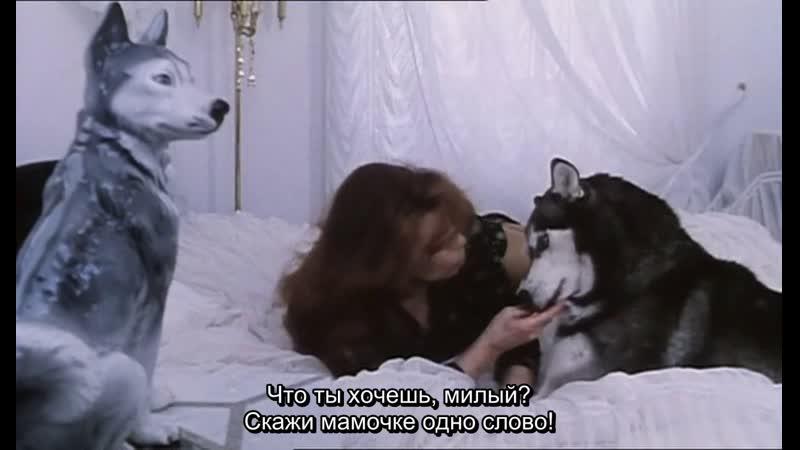 Животная любовь 1995 Режиссер Ульрих Зайдль документальный рус субтитры