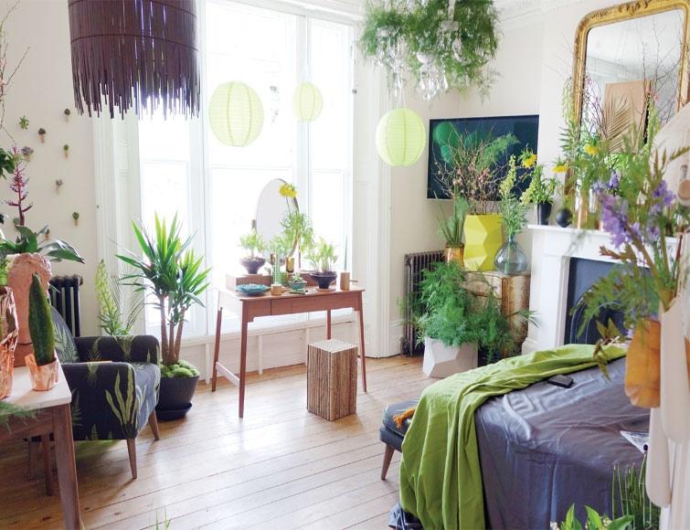 5 комнатных растений принесут счастье и удачу в ваш дом