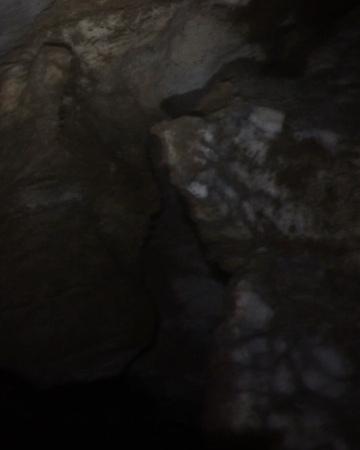"""Дмитрий Логинов on Instagram: """"Пещера Подарок, оренбуржье Подарком стали большое количество марьиного стекла и состояние пола, позволившее не утонуть в грязи и залезть…"""""""