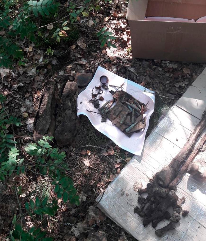 Останки четырех красноармейцев обнаружили поисковики в Малоритском районе