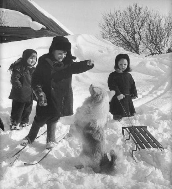 Зимние забавы. Лыжи, санки, горки помните
