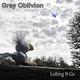 Grey Oblivion - When It All Falls Down