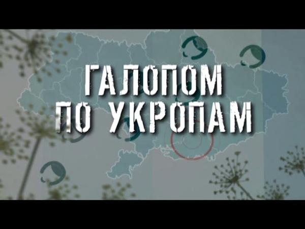 ГТРК ЛНР Галопом по укропам 17 40 30 марта 2020 год