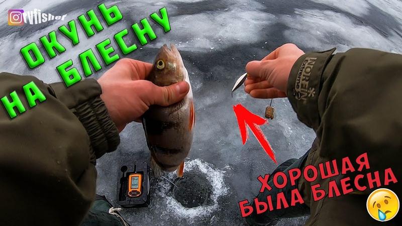 Рыбалка на Ладоге 2020 Ловля окуня зимой на блесну