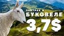 Путешествие по Украине на машине в Буковель маршруты, цены, лайфхаки